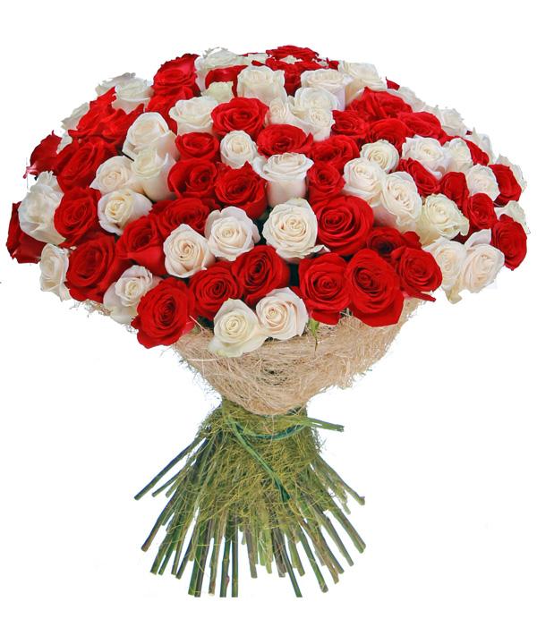 Букет как, букет сборка из роз красных и белых