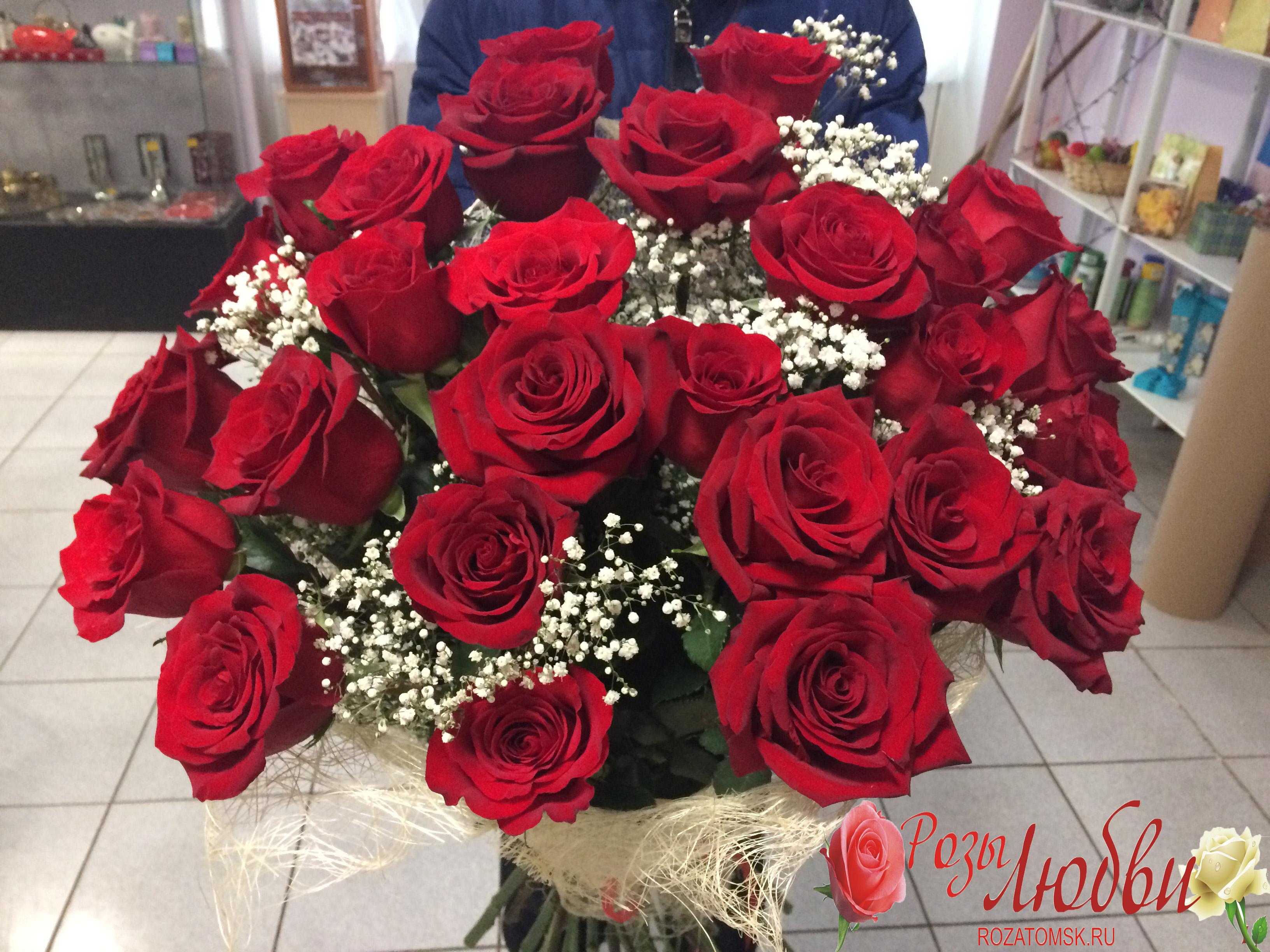 Любимой цветы, большие букеты роз с гипсофилой